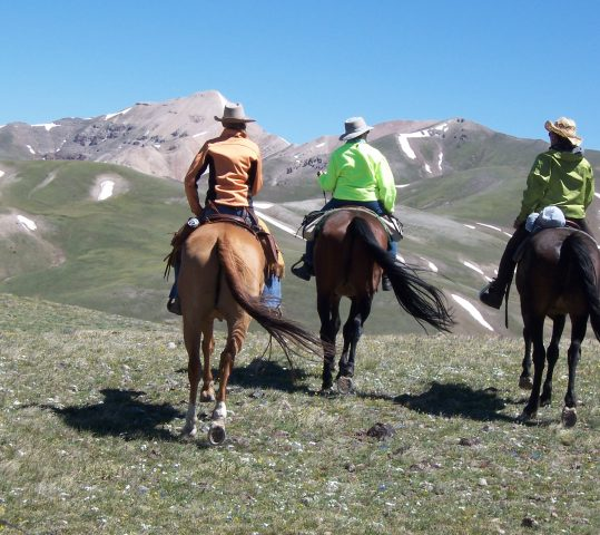 Base Camp Rides